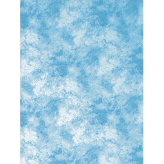 ProMaster Toile de fond Nuage Bleu Léger
