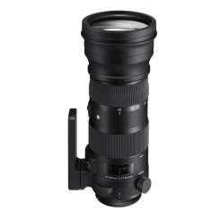 Sport 150-600mm F5-6.3 DG OS HSM (Canon Mount)