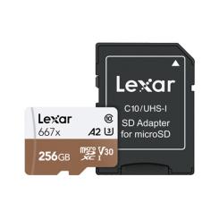 MicroSDXC 256GB Professional 667x