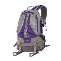 Kinray 53 Bag - Grey and Purple
